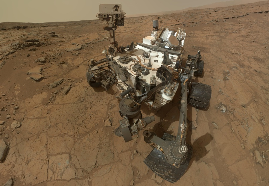 Curiosity taking a selfie.