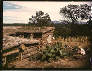 Garden adjacent to the dugout home of Jack Whinery, homesteader. Pie Town, New Mexico, September 1940. Reproduction from color slide. Photo by Russell Lee. Prints and Photographs Division, Library of Congress