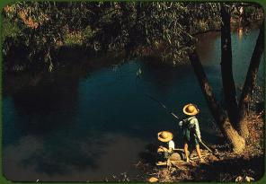 Boys fishing in a bayou. Schriever, Louisiana, June 1940. Reproduction from color slide. Photo by Marion Post Wolcott. Prints and Photographs Division, Library of Congress